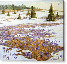 Cold Weather Is Going Away Acrylic Print by Kiril Stanchev