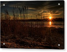Cold Winter Sunset Acrylic Print