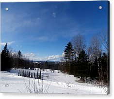 Cold Winter's Day Acrylic Print by Steven Valkenberg