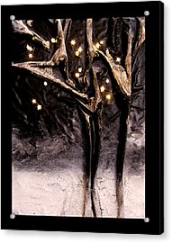 Cold Winter's Night Acrylic Print