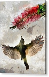 Acrylic Print featuring the painting Colibri by Georgi Dimitrov