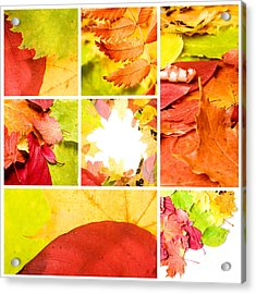 Collage Colorful Acrylic Print by Boon Mee