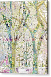 Collage Of Trees Acrylic Print