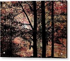 Collage2v2 Acrylic Print by Katherine Sands