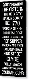 College Of Charleston College Town Wall Art Acrylic Print