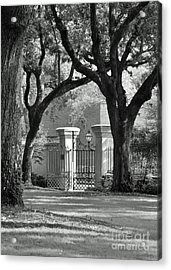 College Of Charleston Gate Acrylic Print
