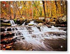 Collins Creek Acrylic Print