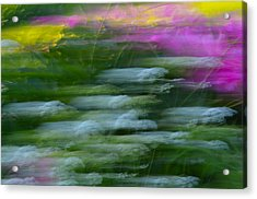 Color Blown Acrylic Print