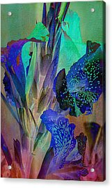 Color Bound Acrylic Print