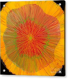 Acrylic Print featuring the painting Color Burst 4 by Anna Skaradzinska