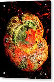 Acrylic Print featuring the photograph Color Collage Mushroom by John King