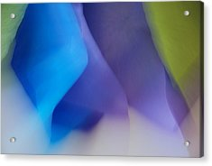 Color Crimp Acrylic Print