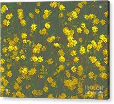 Color Flower Wall Acrylic Print