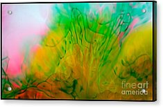 Color Formations II Acrylic Print