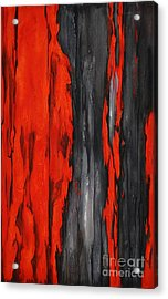 Color Harmony 17 Acrylic Print by Emerico Imre Toth