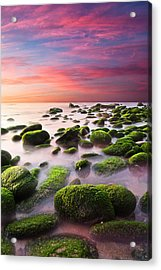 Color Harmony Acrylic Print