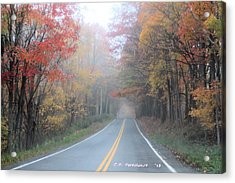 Color In The Country Acrylic Print by Carolyn Postelwait