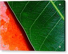 Color Me Mango Sweet And Spicy Acrylic Print by James Temple