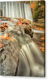 Color Of Autumn Acrylic Print