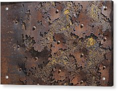 Color Of Steel 2 Acrylic Print