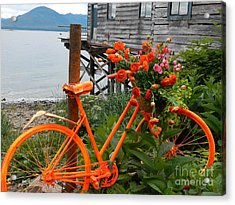 Acrylic Print featuring the photograph Color Of Tenakee  by Laura  Wong-Rose
