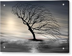 Color Of The Wind Acrylic Print