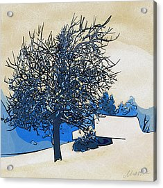 Color Of Winter Acrylic Print