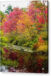 Acrylic Print featuring the photograph Color On The Water by Mike Ste Marie