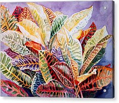 Acrylic Print featuring the painting Color Patterns - Crotons by Roxanne Tobaison