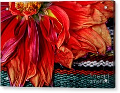 Color Power Acrylic Print