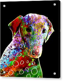 Color Splash Abstract Dog Art  Acrylic Print by Ann Powell