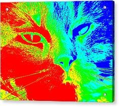 Color Storm Acrylic Print