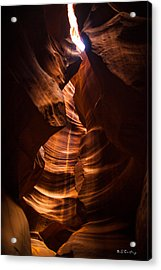 Color Within Acrylic Print by Bill Cantey