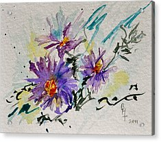 Colorado Asters Acrylic Print by Beverley Harper Tinsley
