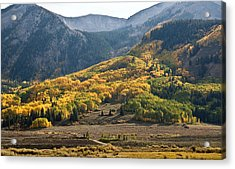 Acrylic Print featuring the photograph Colorado Changing Eleven   by Eric Rundle