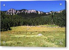 Colorado Field Acrylic Print by Alan Russo