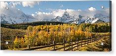 Colorado Gold Panorama Acrylic Print