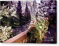 Colorado Landscape Acrylic Print by Madeline Ellis