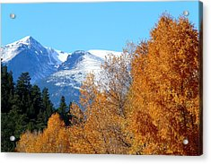 Colorado Mountains In Autumn Acrylic Print