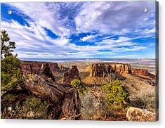 Colorado National Monument View Acrylic Print by John McArthur
