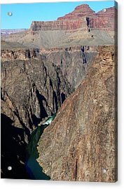 Colorado River From Plateau Point Acrylic Print by Scott Rackers