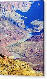 Colorado River Winding Through The Grand Canyon Acrylic Print by Shawn O'Brien