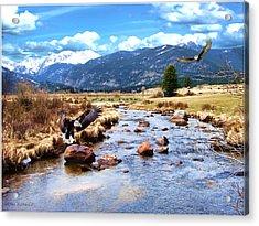 Colorado Rockies Acrylic Print by Tom Schmidt