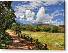 Colorado Scenic Pathway Acrylic Print by Cheryl Davis
