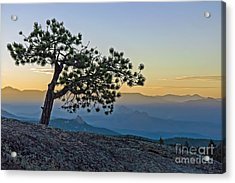 Colorado Sunset Acrylic Print