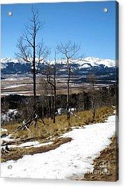 Colorado Trail 1 Acrylic Print by Claudette Bujold-Poirier