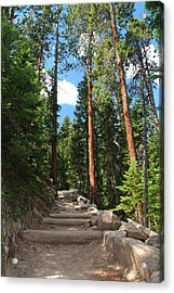 Colorado Trail Acrylic Print by Alicia Knust