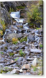 Colorado Waterfall Mountain Stream Acrylic Print by Andrea Hazel Ihlefeld