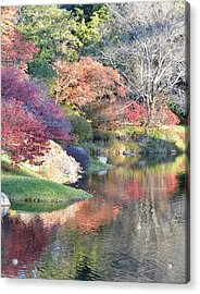 Colored Reflections Acrylic Print by Lena Hatch