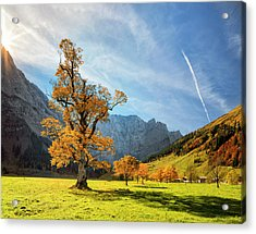 Colorful Autumn At Ahornboden In Acrylic Print by Dietermeyrl